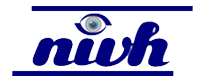 National Institute for the Visually Handicapped logo